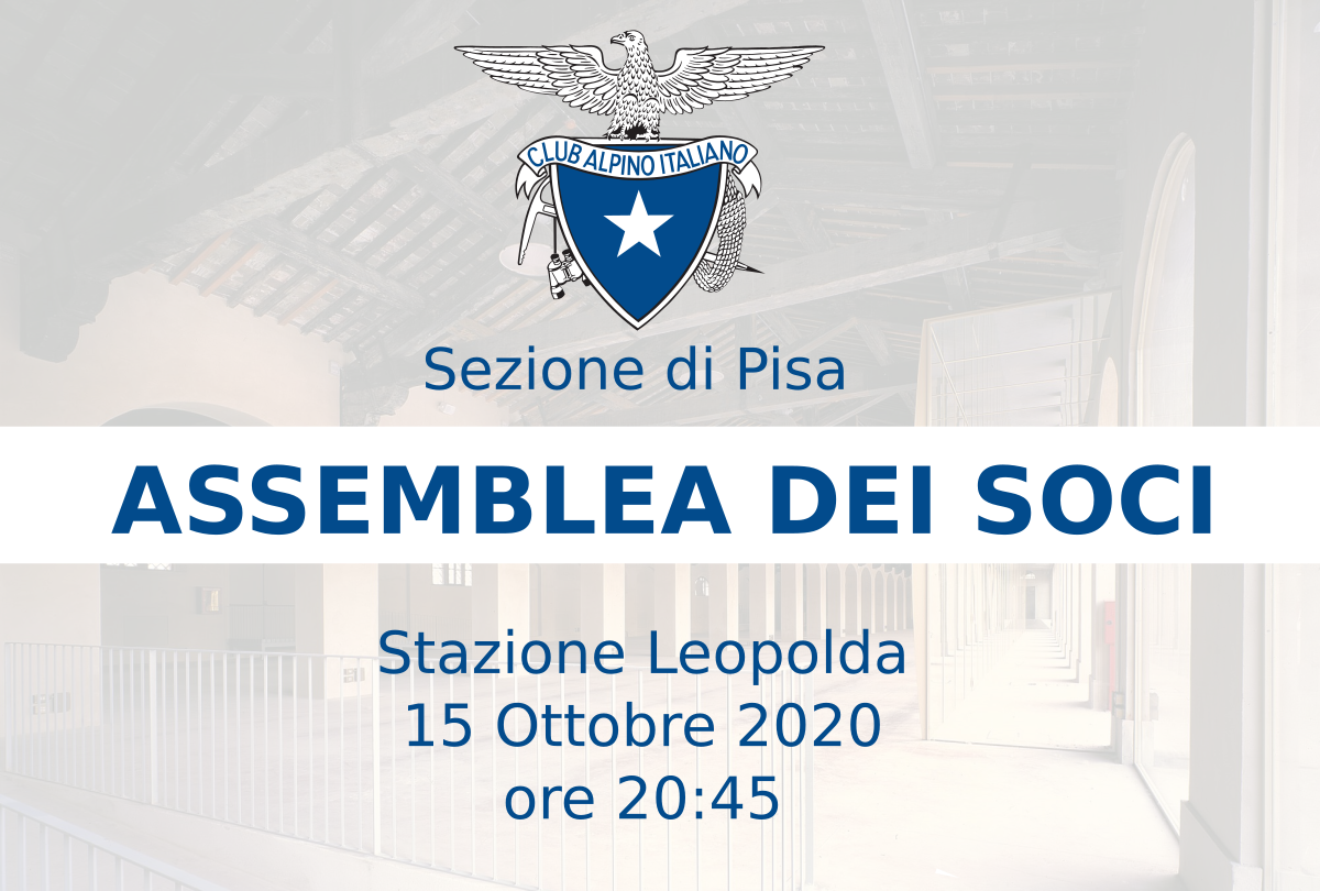 Read more about the article Assemblea dei Soci 2020
